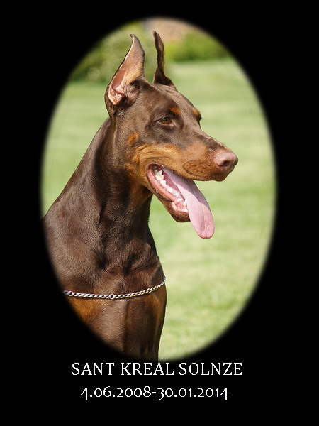 Sant Kreal Solnze  RIP